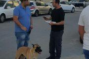 נמשכת האכיפה נגד מטרד צואת הכלבים ברחבי העיר