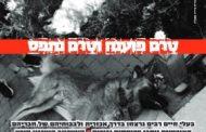 flipbook מהדורת שישי 13/03/20 גיליון 666